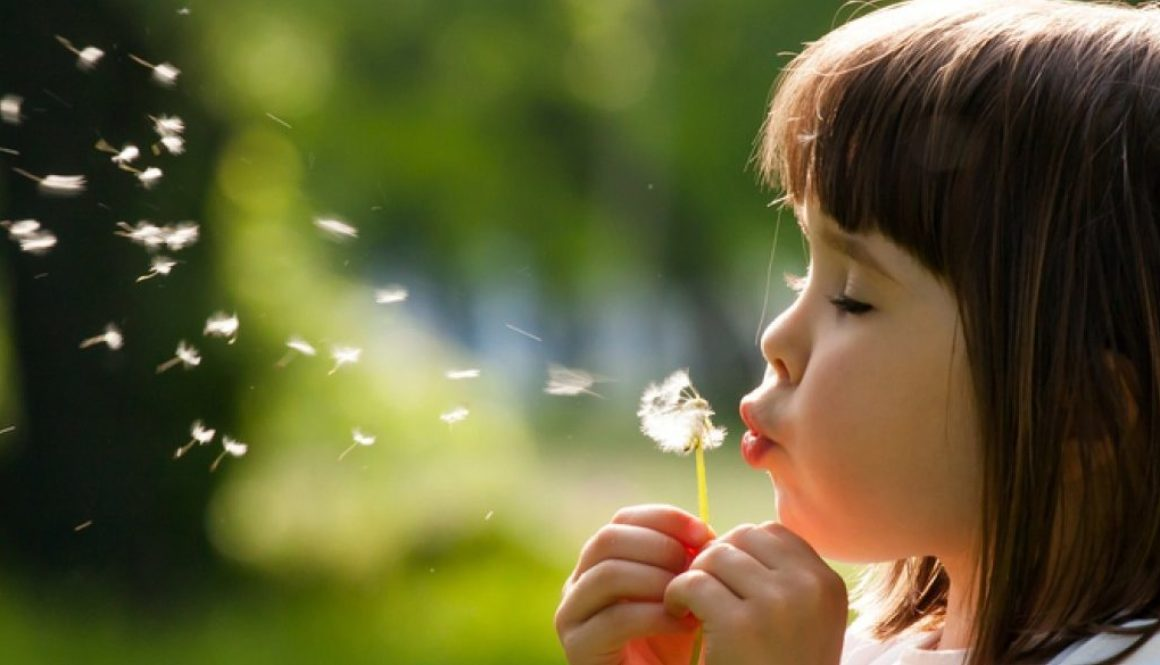 Test na alergie